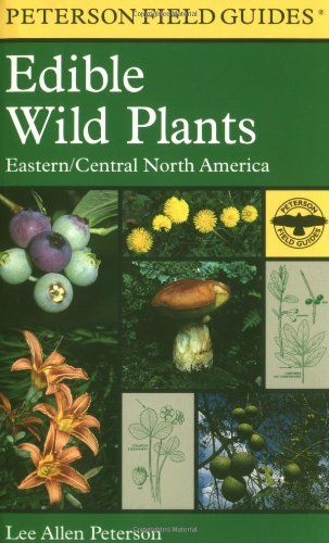 A Field Guide To Edible Wild Plants Eastern And Central Edible