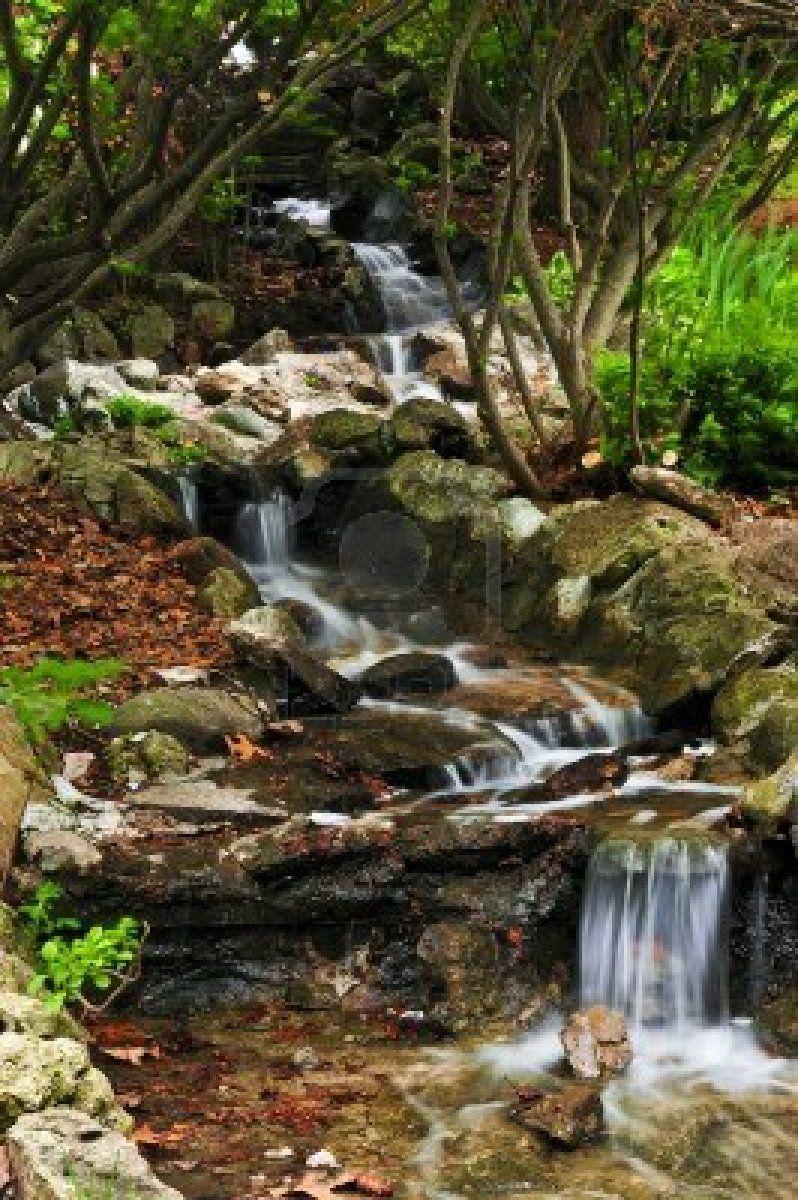 Creek with small waterfalls in japanese zen garden | front yard ...