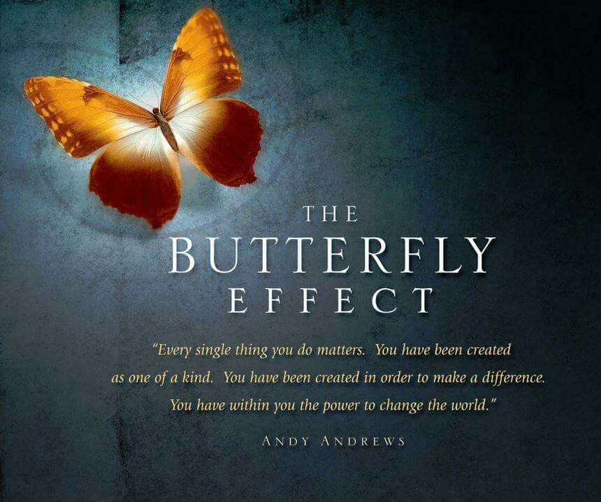 Butterfly Effect Butterfly Quotes Butterfly Inspiration Butterfly Effect