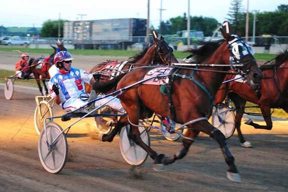 harness racing | harness racing at the northern maine fair in ...