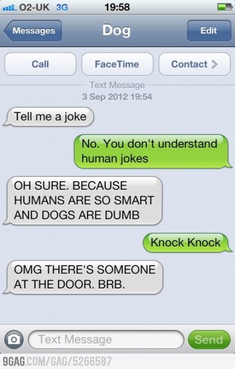 The Top 13 Hilarious Exchanges From The Text From Dog Blog | Funny