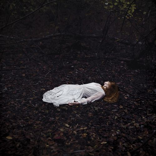 I buried myself deep in the leaves of Autumn waiting to dream...