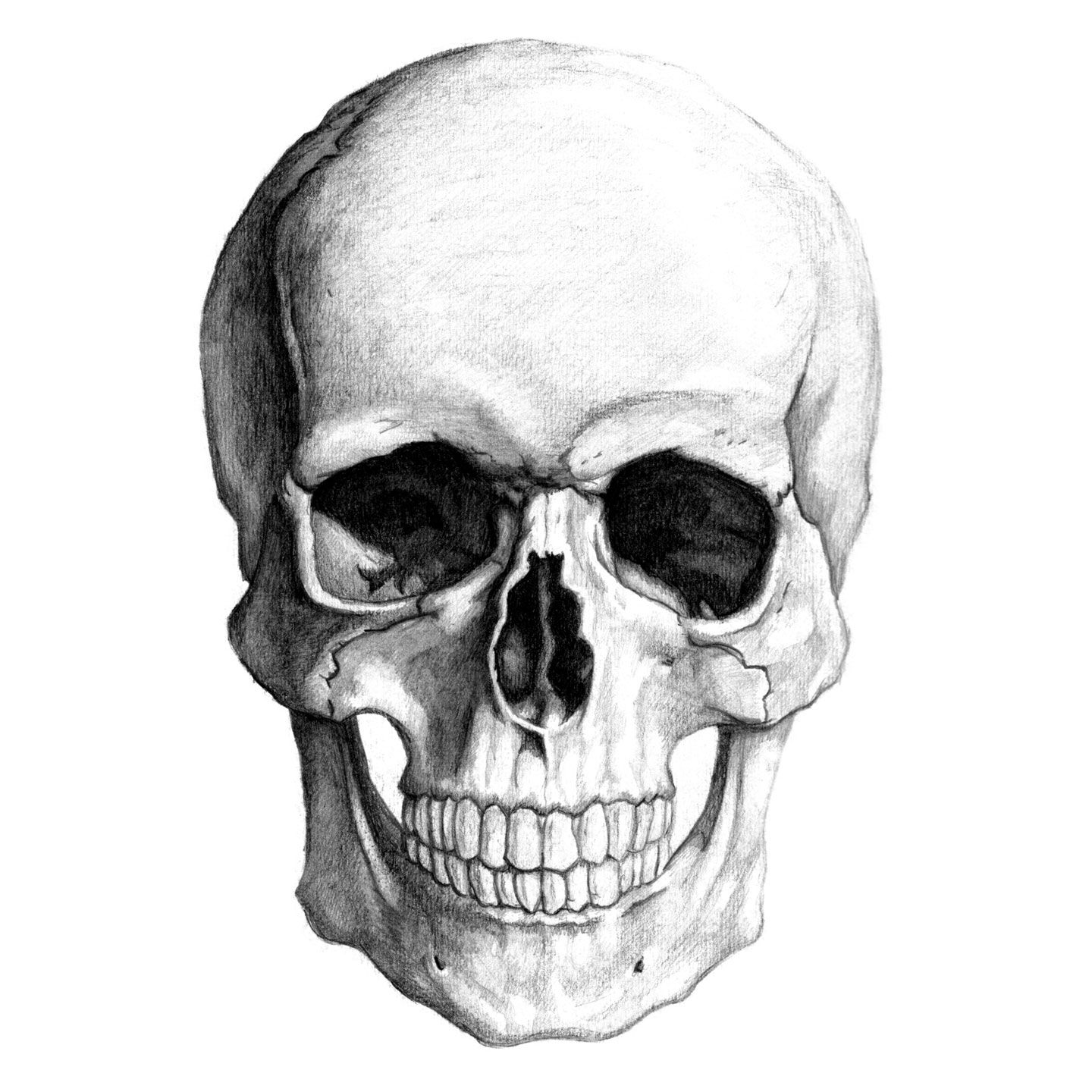 Skull Face Drawing Easy How To Draw A New In 2019 Skull