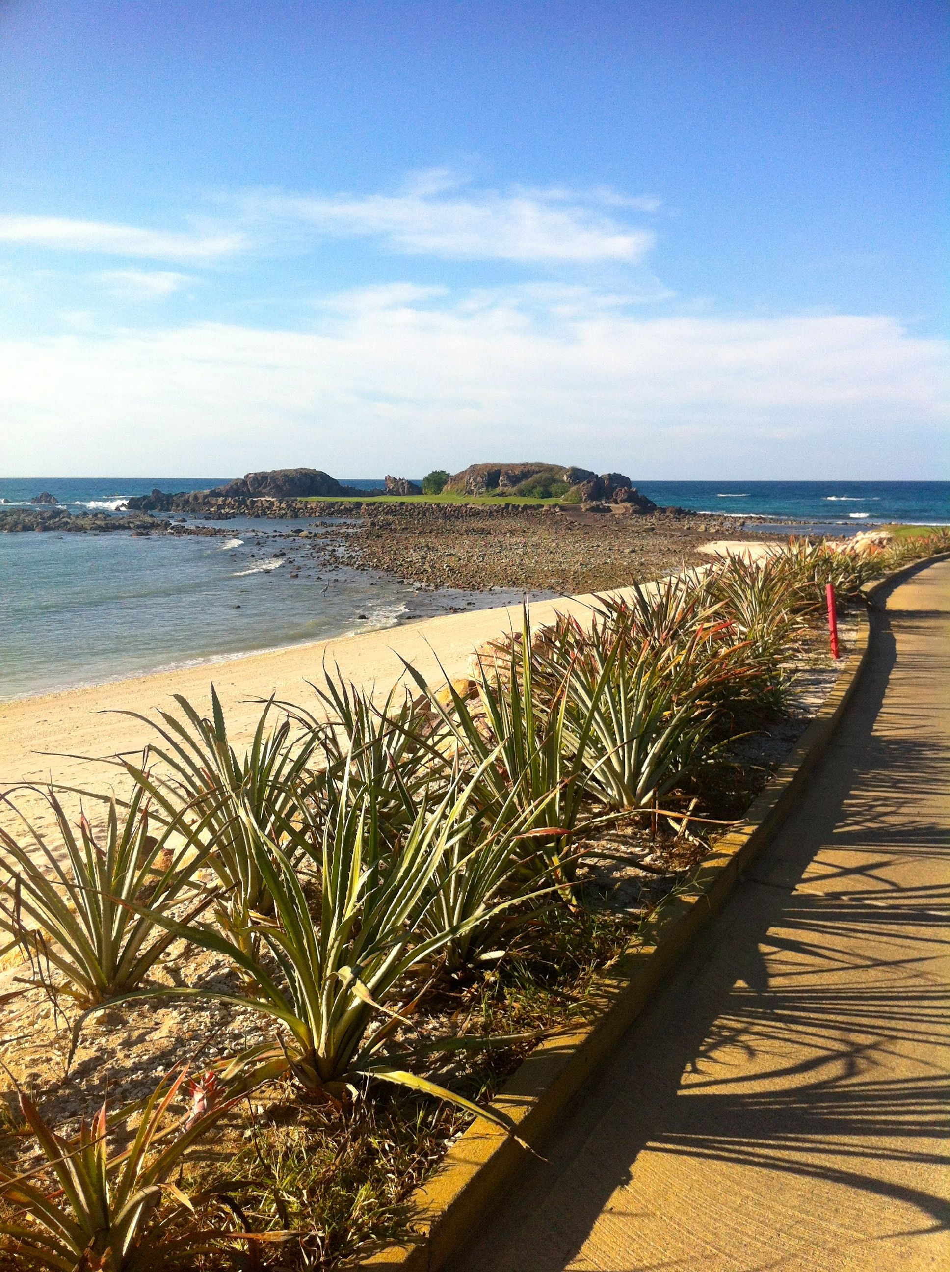 Four Seasons Punta Mita.  Famous Tail of the Whale island golf hole.