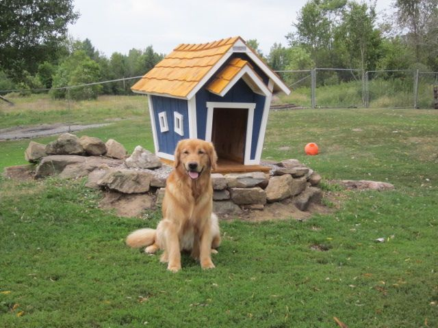 Chance Crooked Dog House Dog Houses Dogs Crooked House