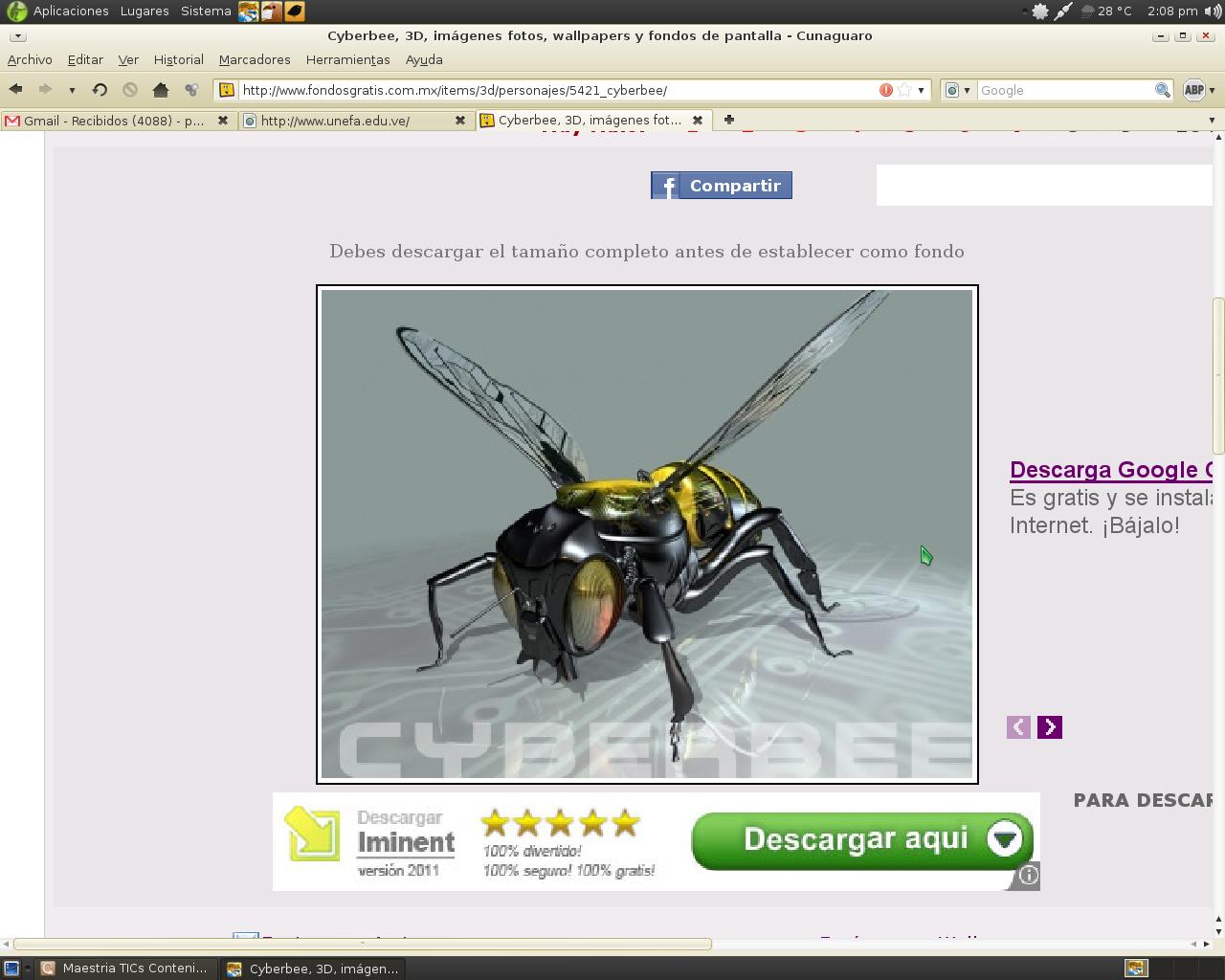 cyberbee