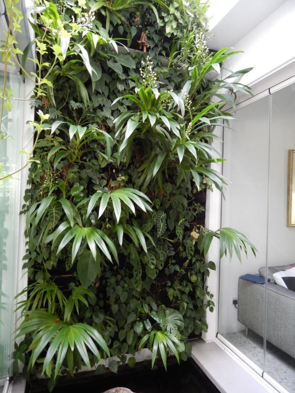Private Residence, Singapore #GreenWall #LivingWall #VerticalGarden ...