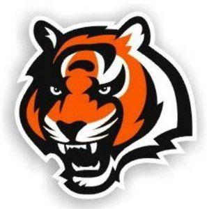 d95878ed cincinnati bengal tiger painting | Amazon.com: Cincinnati Bengals 12 ...