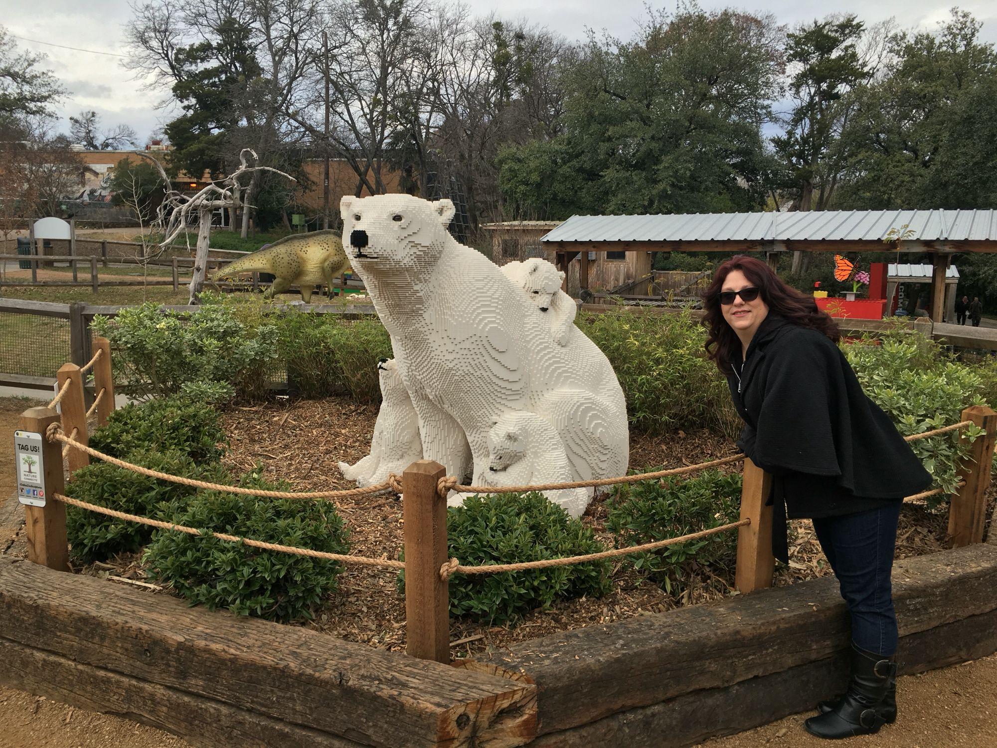 Dallas Zoo Dallas Zoo Polar Bear Zoo