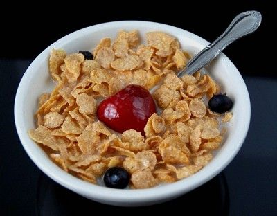 Fake Food Bowl Cereal with Fruit