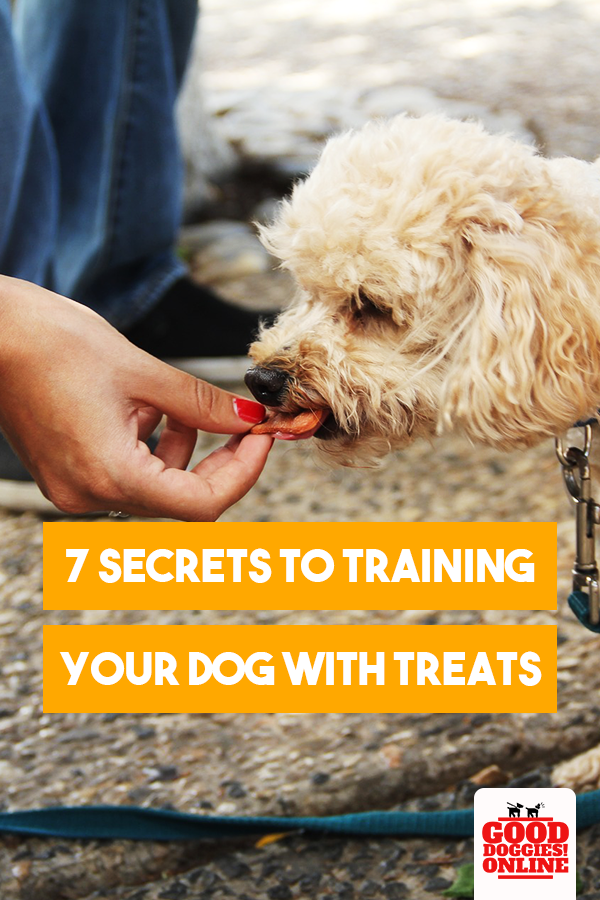 7 Secrets To Training Your Dog With Treats Training Your Dog