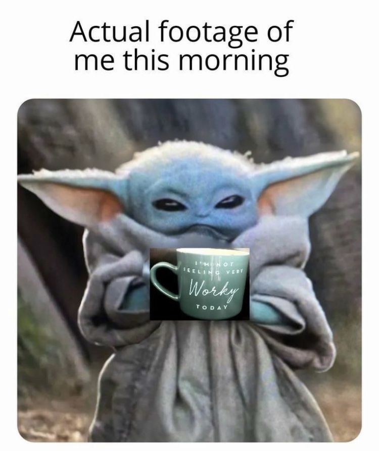 Baby Yoda Actual Footage Of Me This Morning Yoda Funny Yoda Meme Funny Memes