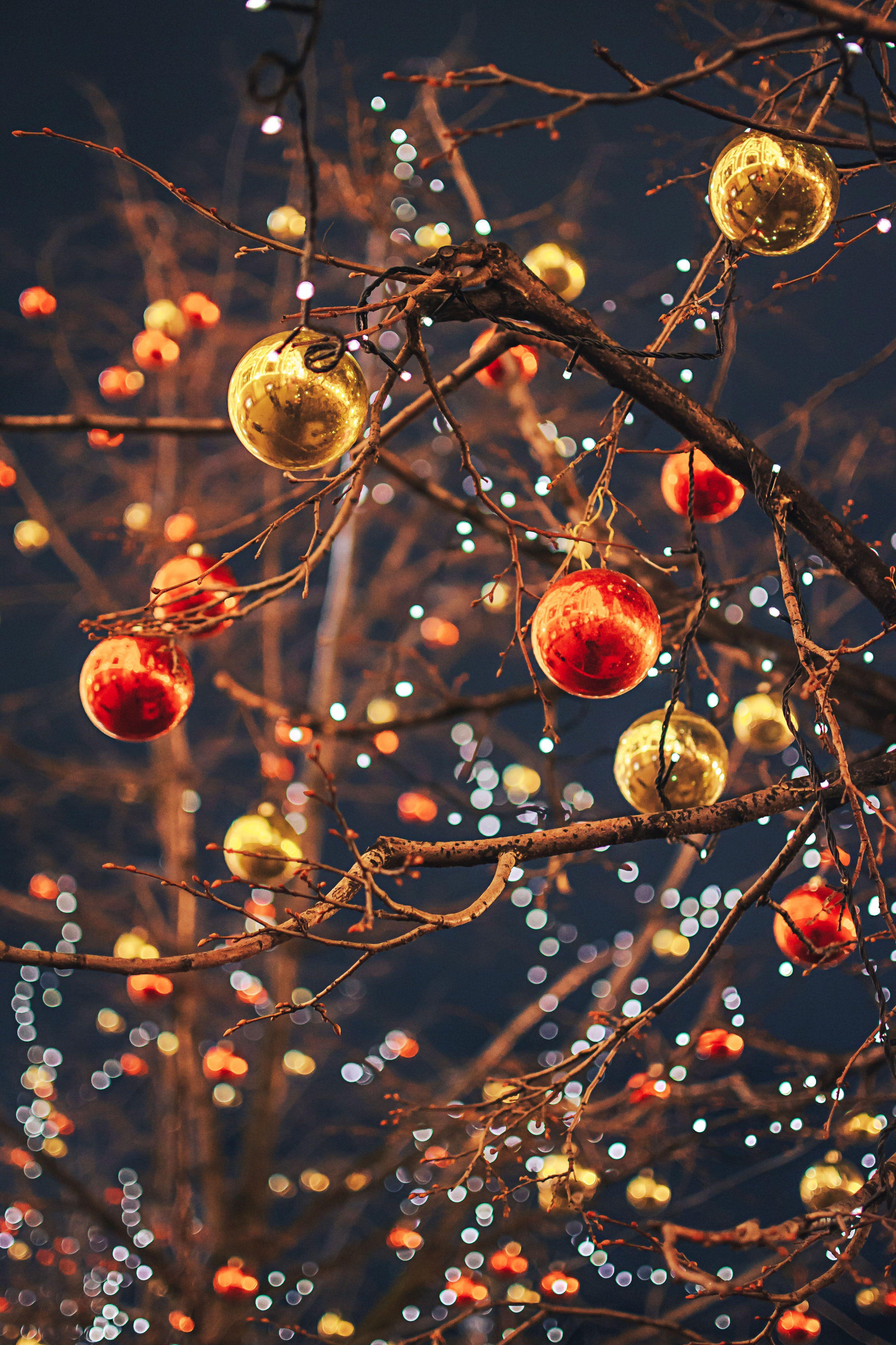 Pin By Liu Jieyu On Nikon D3100 Christmas Wallpaper Wallpaper Iphone Christmas Christmas Aesthetic