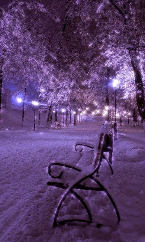 Snowy Bench Live Wallpaper