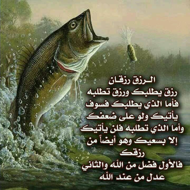 Desertrose الرزق نوعان Islamic Pictures Cool Words Qoutes