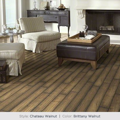 A Gorgeous Scarred Walnut Texture Featuring A Time Worn French Bleed