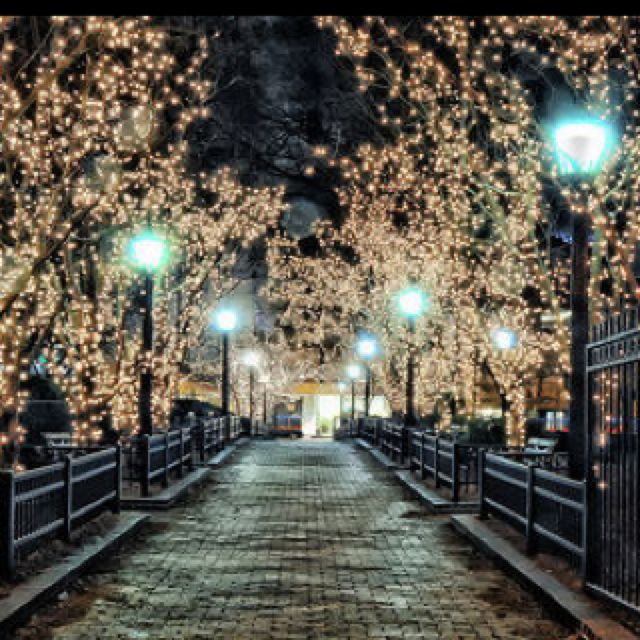 Christmas Tree Promenade