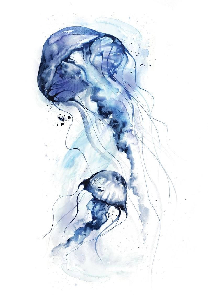 Ensemble 3 Jellyfish Aquarell Paintings Discounted Gallery Wall