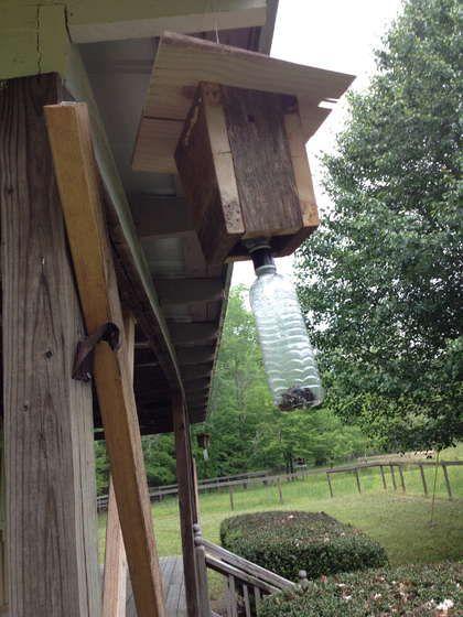 Making Carpenter Bee Traps Carpenter Bee Trap Bee Traps Carpenter Bee