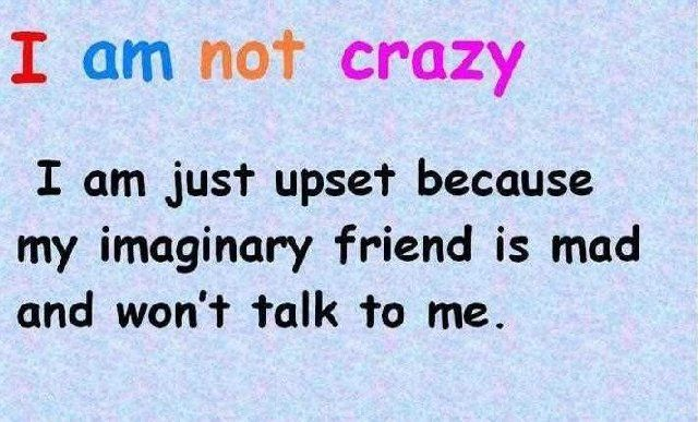 I Am Not Crazy. I Am Just Upset Because My Imaginary Friend Is Mad And Wont  Talk To Me.