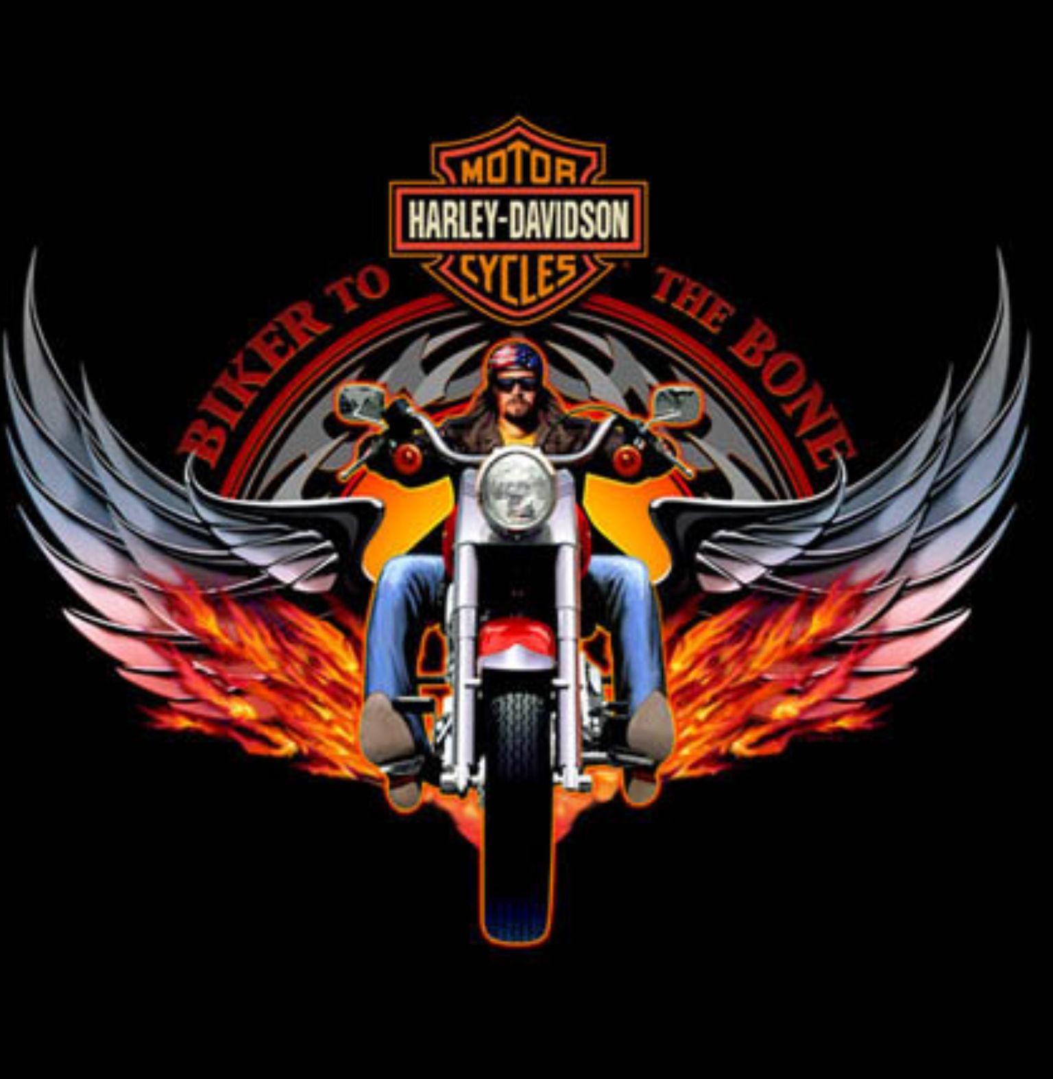 Compliments Of Uhl Studios Very Impressive Work Harley Davidson