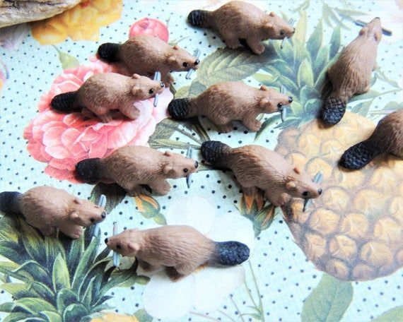 Bulk MINIATURE BEAVERS Animal Figurine Figure Micro Mini Fairy Garden Animals Dollhouse Diorama Terr You get a special eyecatcher when you choose unexpected color variati...