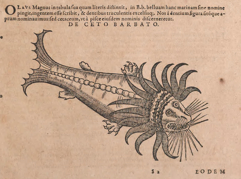 """""""The Kraken!"""" from Conradi Gesneri medici Tigurini Historiae animalium liber IV : qui est De piscium & aquatilium animantium natura : cum iconibus singulorum ad viuum expressis ferè omnibus DCCXII, by Conrad Gessner, 2nd Ed. 1604. http://media-cache-ak0.pinimg.com/originals/4e/a4/15/4ea4158fbc3192c3fd634ba254b54203.jpg"""