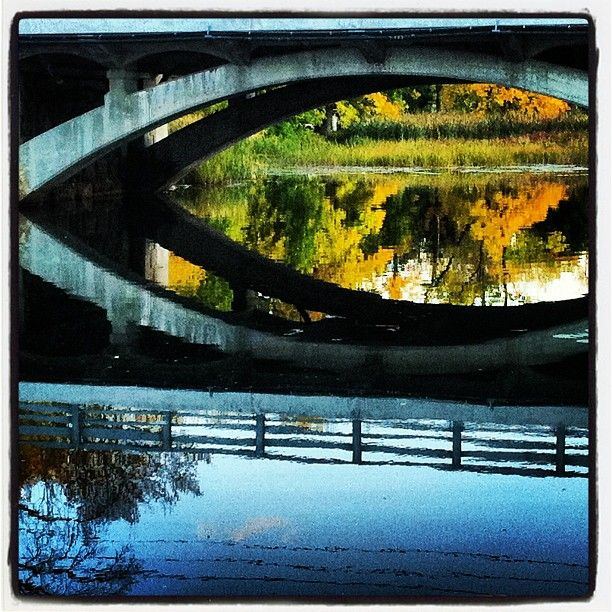 Reflections of #Autumn in #Omemee #Ontario #Canada