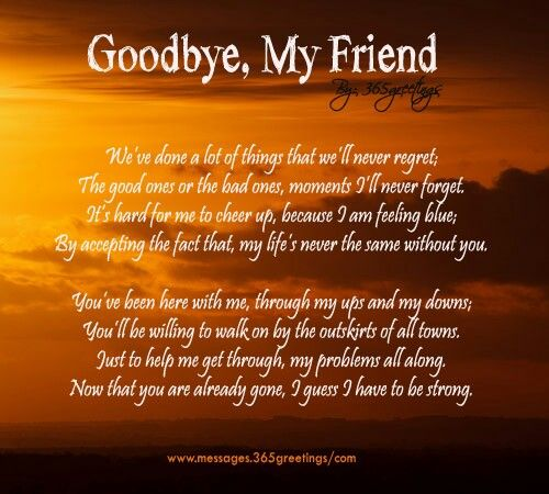My Best Friend Died Suddenly Quotes: Goodbye My Friend R.I.P