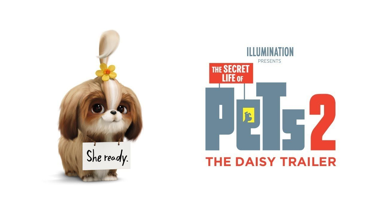 She Ready Welcoming Tiffany Haddish As Daisy Watch The Daisy Trailer For Thesecretlifeofpets2 Now In Secret Life Of Pets Indie Movie Posters Pretty Movie