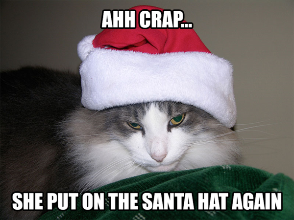 Never Too Early For Christmas Meme