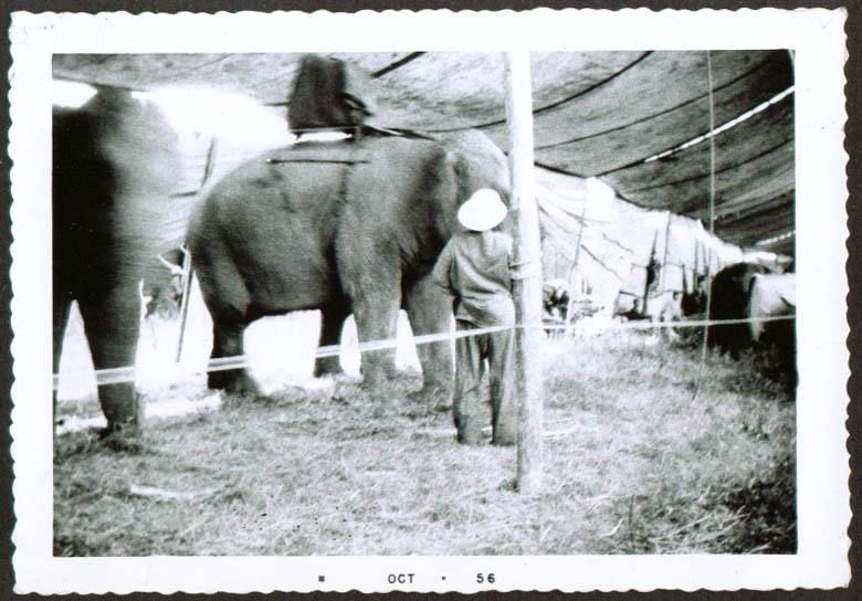 Christy Bros Circus 1929