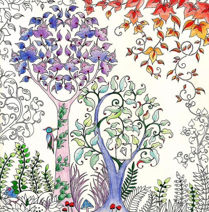 Buka Mewarnai Untuk Orang Dewasa Ente Yakin Sanggup Mewarnai Buku Ini Gan With Images Johanna Basford Coloring Book Basford Coloring Book Enchanted Forest Coloring Book