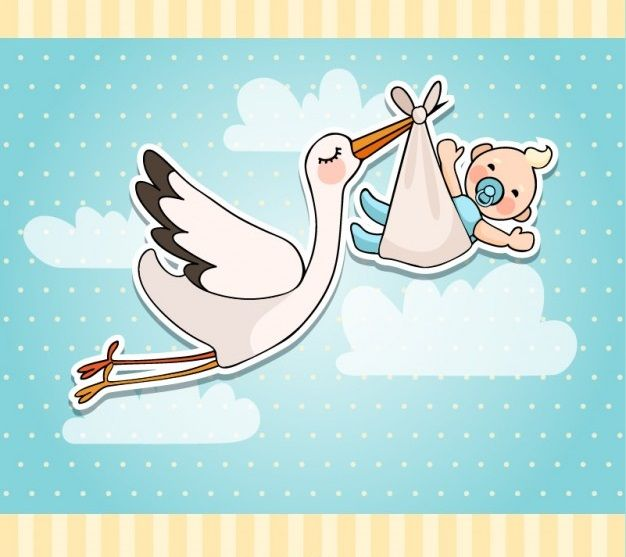 #Cegonha #Bebê #Esperandobebê