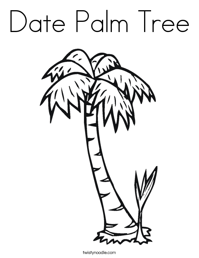 Date Palm Tree Coloring Page Dates