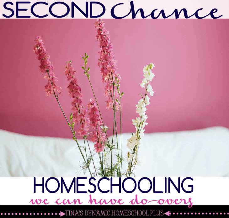 Must Read Homeschool Articles For Encouragement And: Second Chance Homeschooling. Can We Have Do-Overs