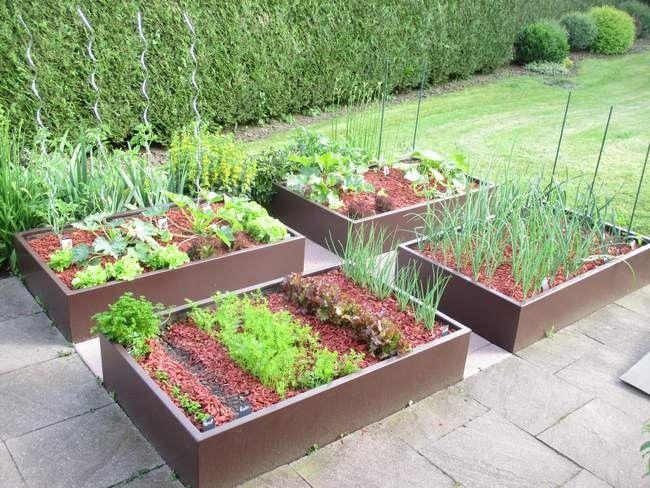 Potager en carr design jardin pinterest potager carr s et design for Jardin en carre en hauteur