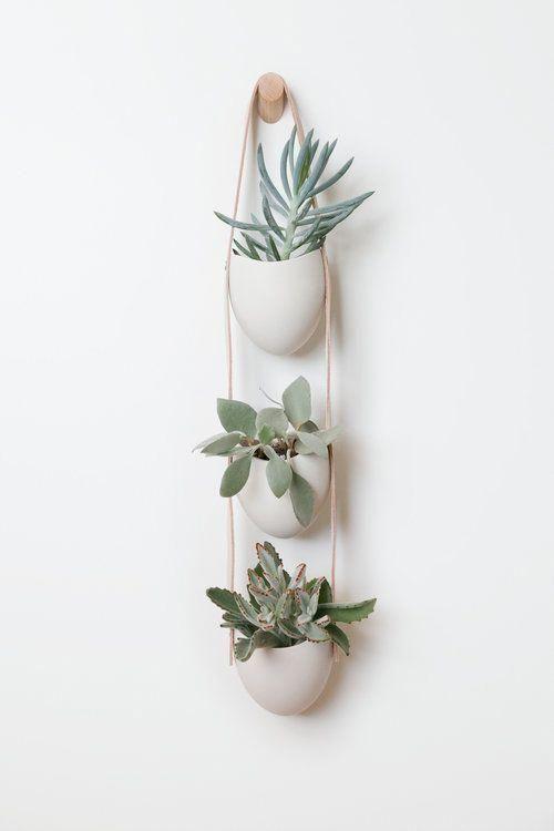 View All — Light + Ladder -   19 diy Interieur plants ideas