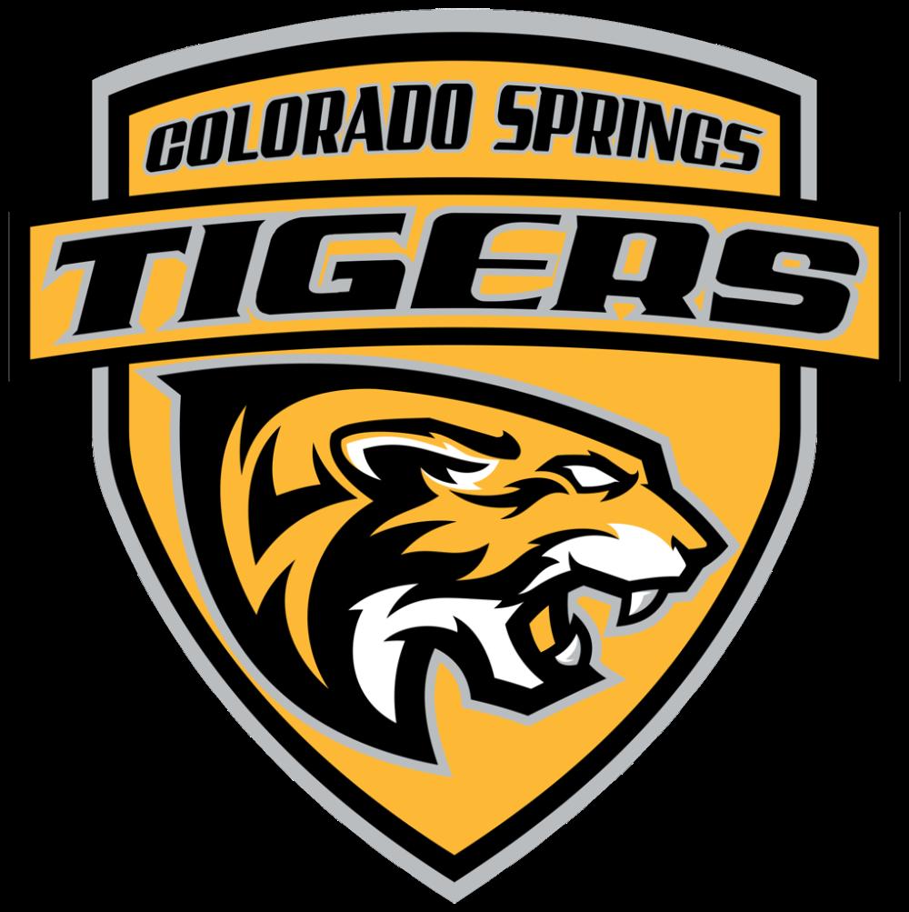 Recruiting Billeting In 2020 Football Logo Usa Hockey Sport Team Logos