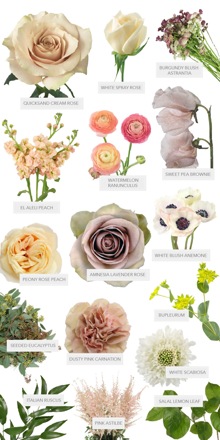 Peachy Mauve Wedding With Diy Blooms From Fifty Flowers In 2020 Fifty Flowers Diy Wedding Flowers Wedding Flower Types