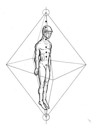 Orientation of the Diamond Field around the body. Note the