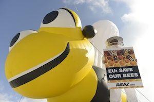 l'Europa ha appena messo al bando i pesticidi ammazza-api!!