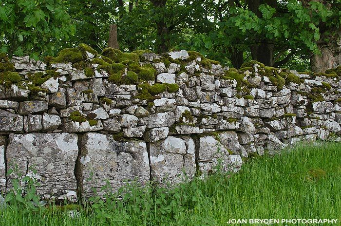 Medieval dry stone wall at Lower Winskill Farm, Langcliffe, Settle