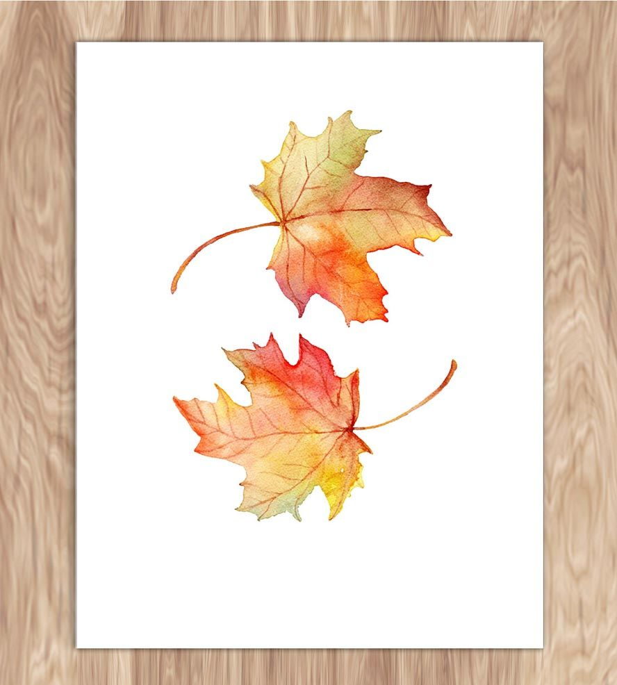 Maple Leaves in the Fall Watercolour Art Print