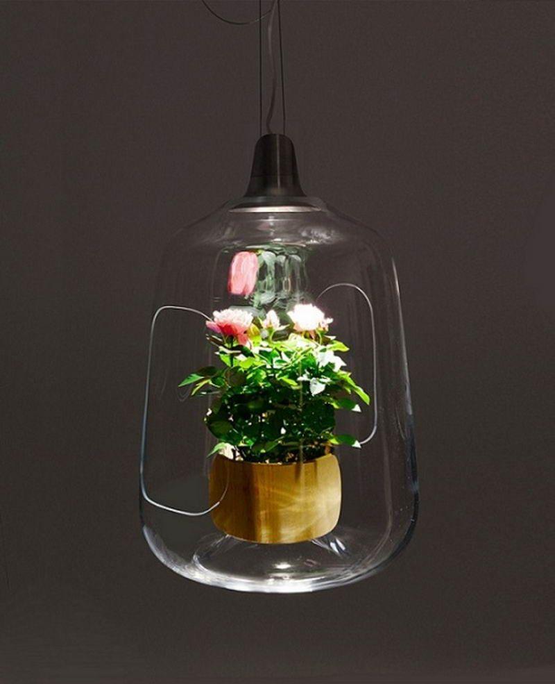 Lámparas para ofrecer más luz para plantas de interior 5