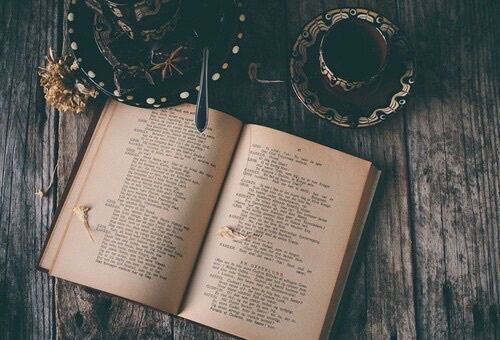Image result for book photography