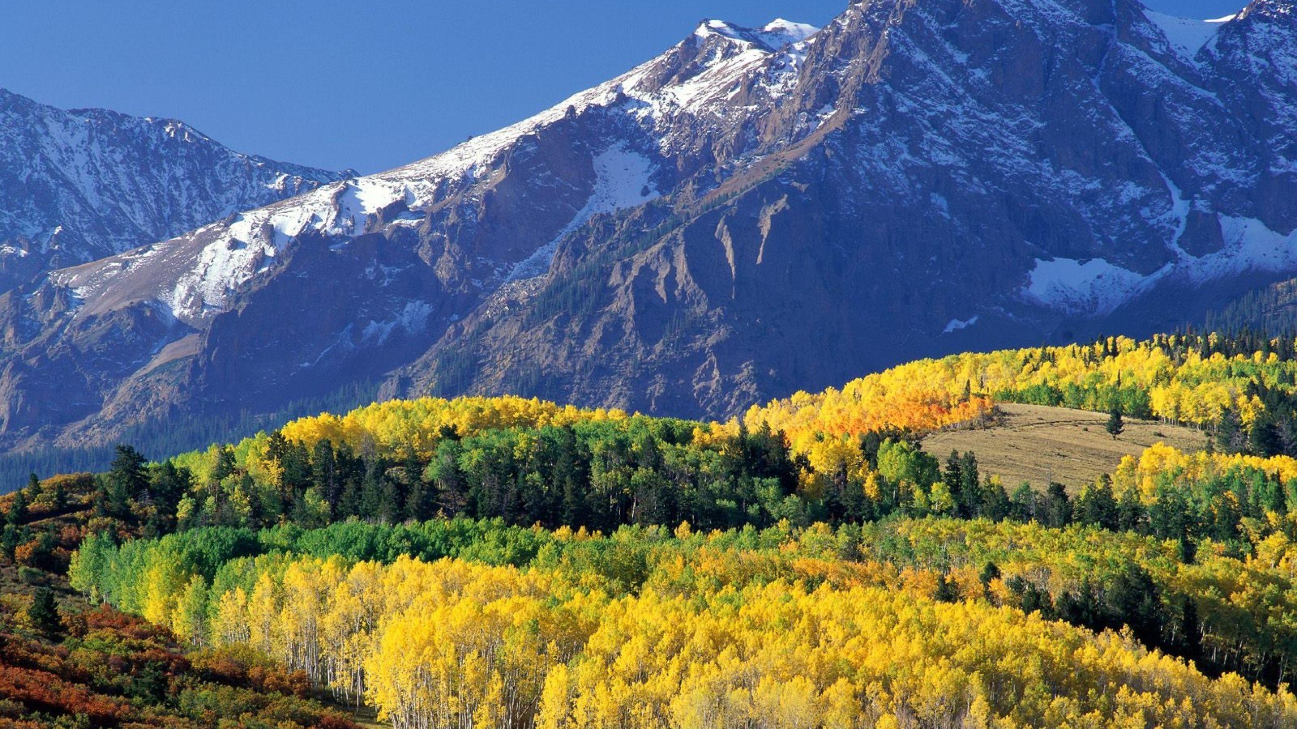 Download Wallpaper 2560x1440 Mount Sneffels Colorado Wood Mountains Autumn Mac Imac 27 Hd Background Scenery Pictures Landscape Trees Landscape