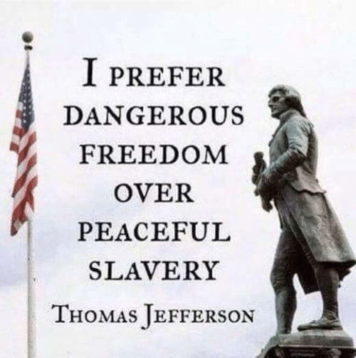 I Prefer Dangerous Freedom Over Peaceful Slavery Thomas Jefferson Meme On Me Me In 2021 Quotes By Famous People Common Sense Quotes Freedom Quotes