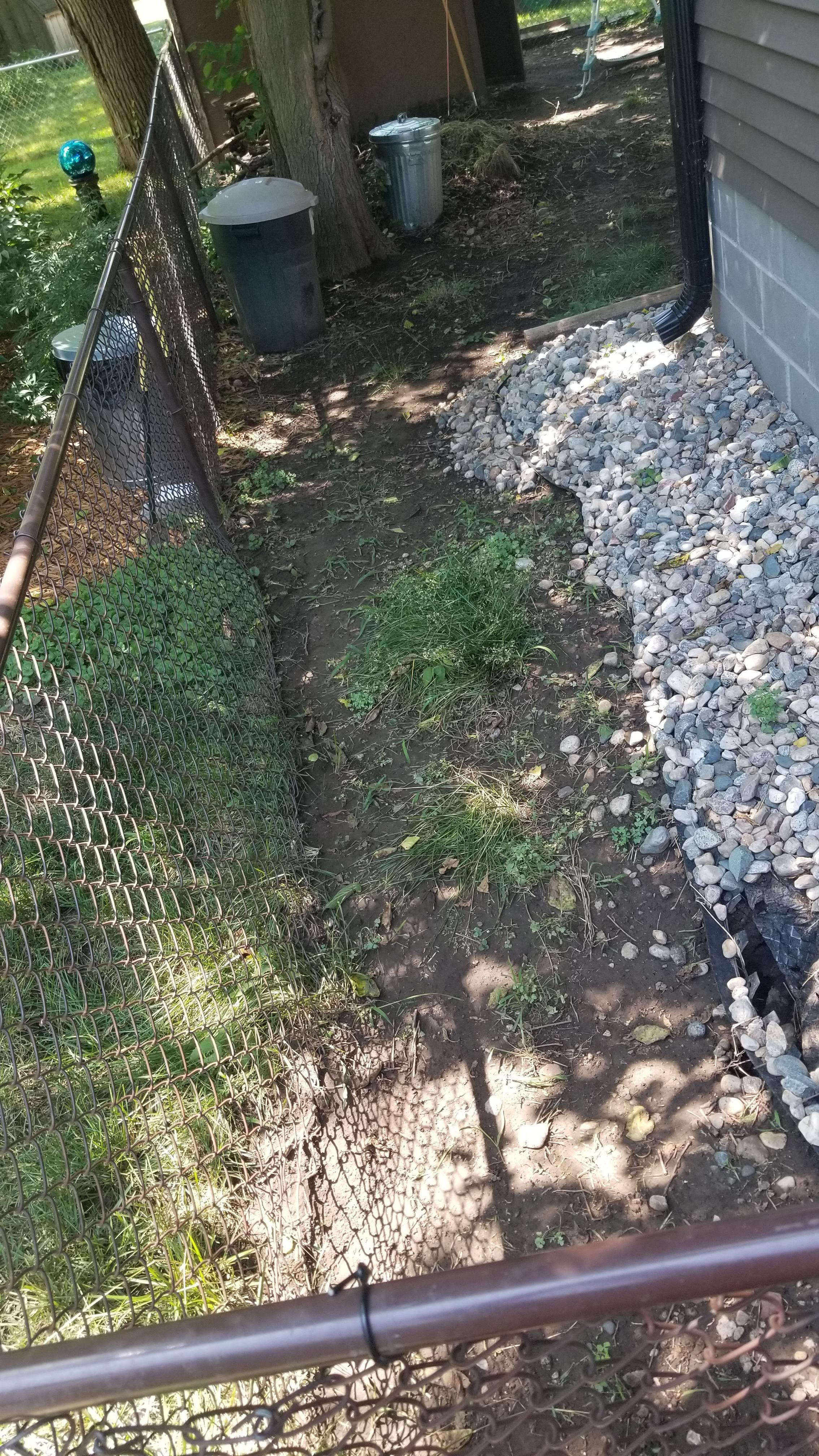 Sinkloch Und Versunkener Boden Vom Langst Verschwundenen Jumbo Baum Auf Der Suche Nach Rat In Bes Boden Sinken Gartenarbeit