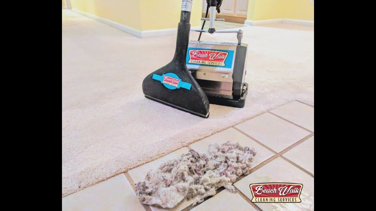 We Also Offer Dry Carpet Cleaning For Bonnet Dry Cleaning Water And Detergent Are Sprayed Onto The How To Clean Carpet Cleaning Upholstery Steam Clean Carpet